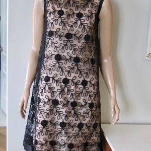 Vintage 50s Sheer Lace Blush Embroidered Dress